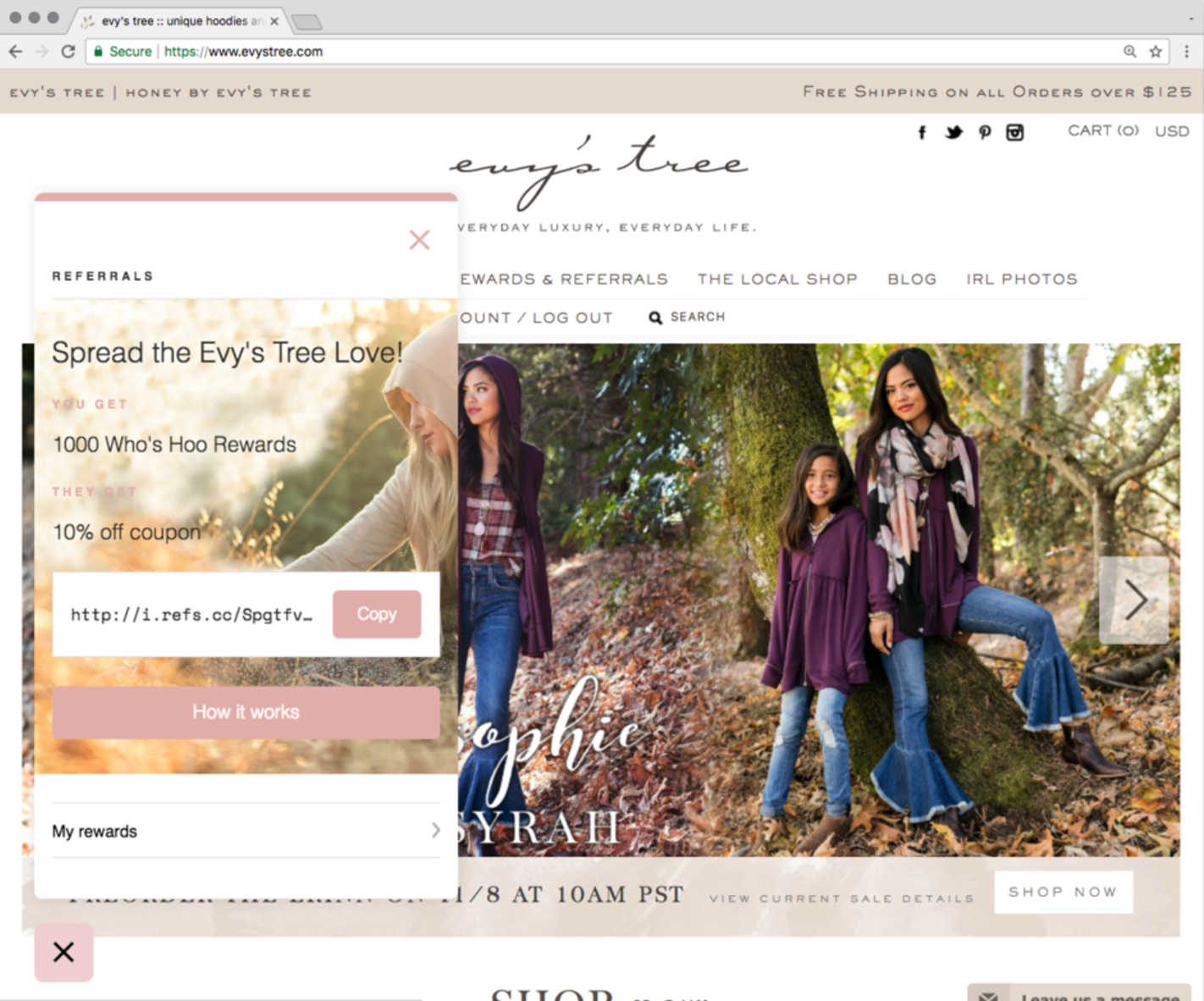 Screenshot showing a referral plugin at work on the evystree.com ecommerce store