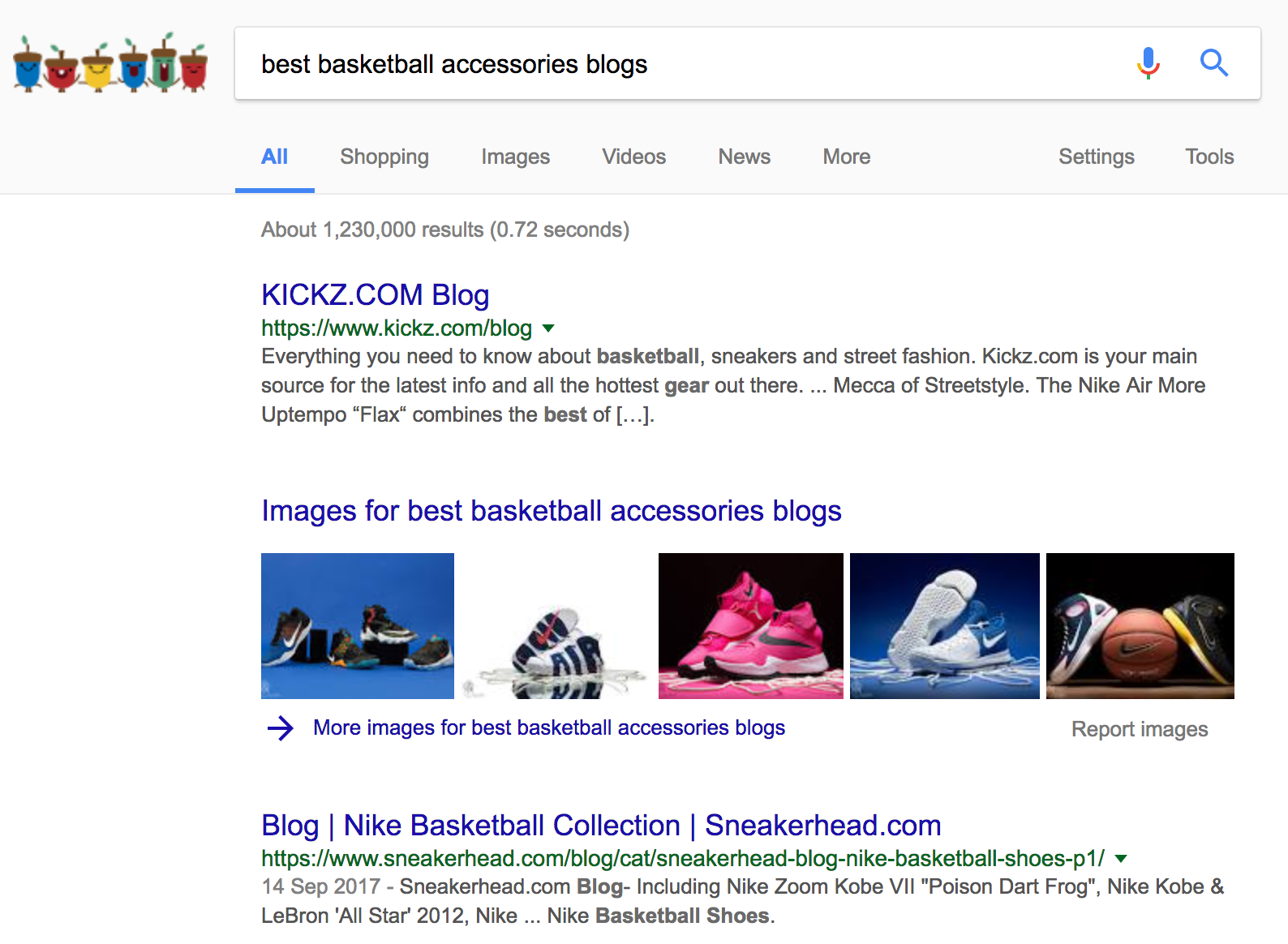 "Screenshot showing a google search for ""best basketball accessories blogs"""