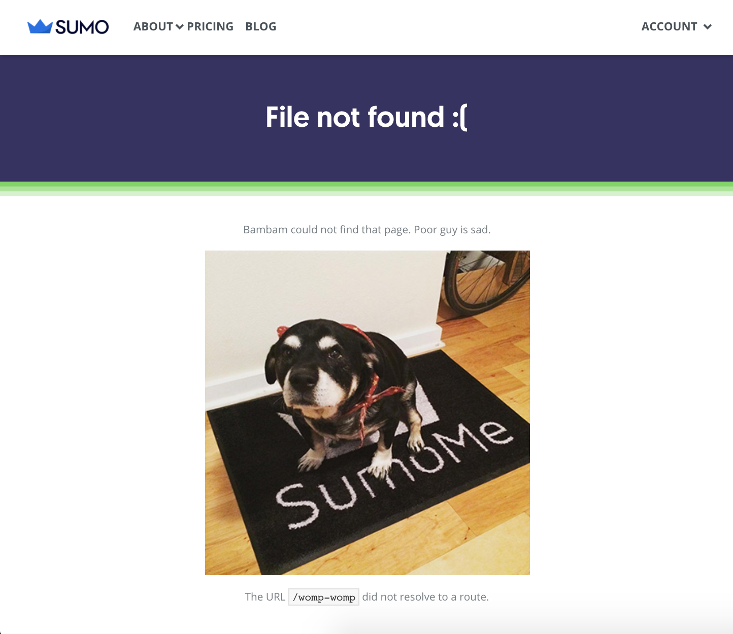 Screenshot showing the Sumo.com 404 page
