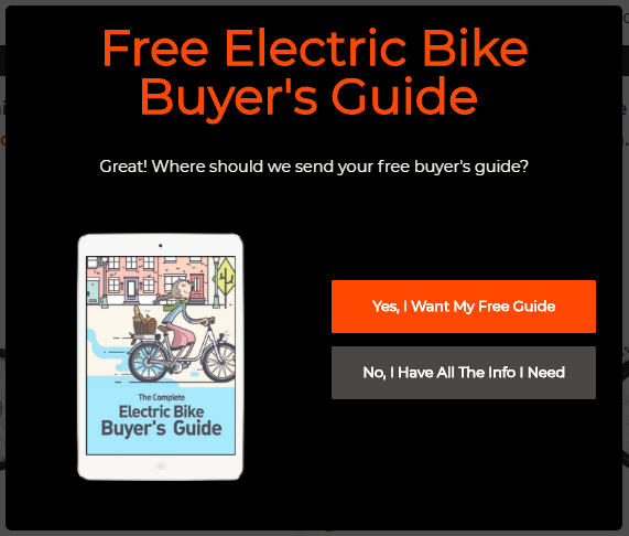 Screenshot showing an opt-in form for an electric bike buyer