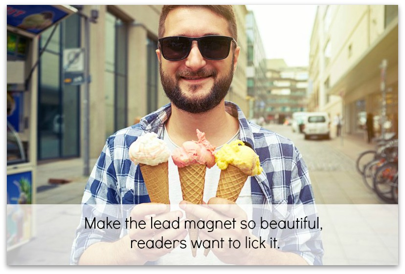 lead magnet so beautiful readers want to lick it