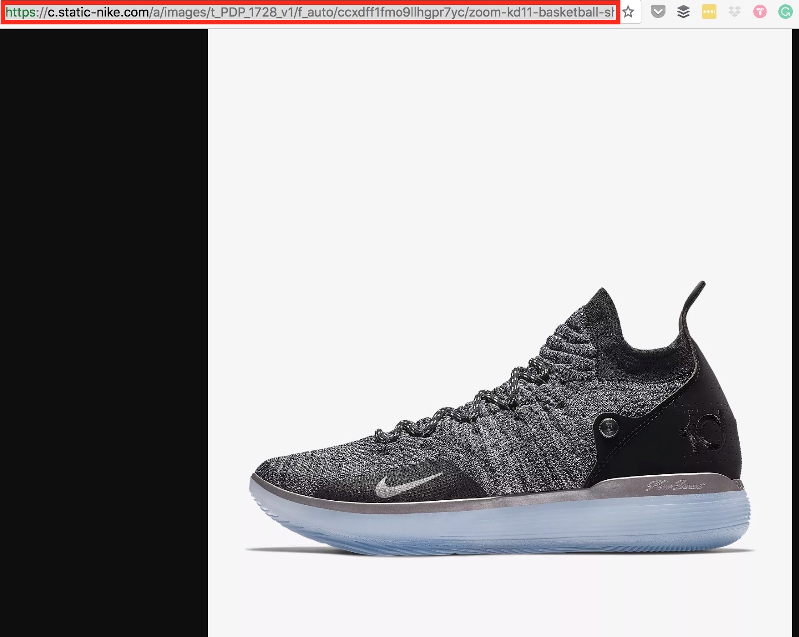 Screenshot showing a shoe and the URL
