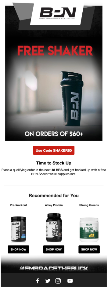 Screenshot of BPN 48 Hour Flash Sale Email