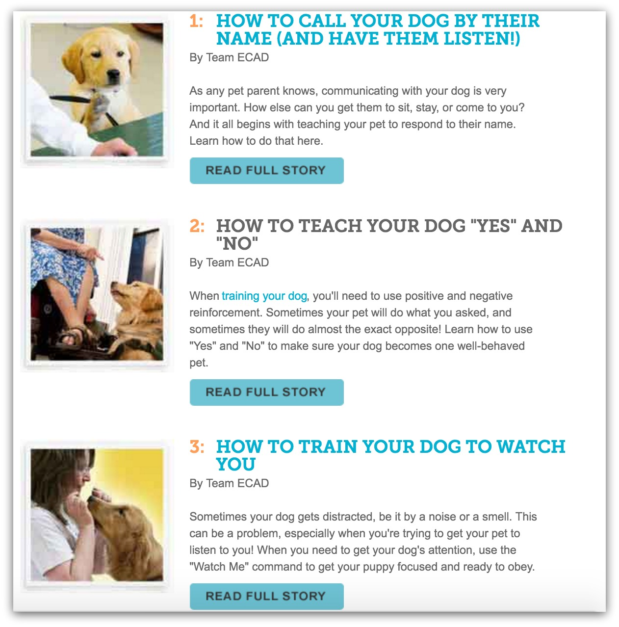 top dog training blogs