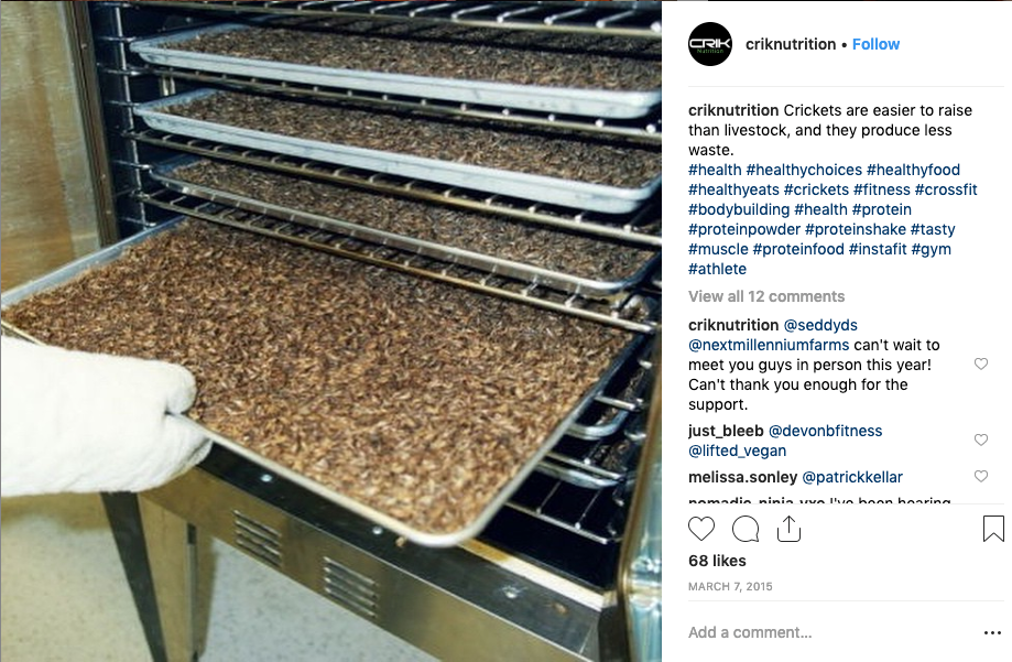 Screenshot showing an Instagram post of roasting crickets