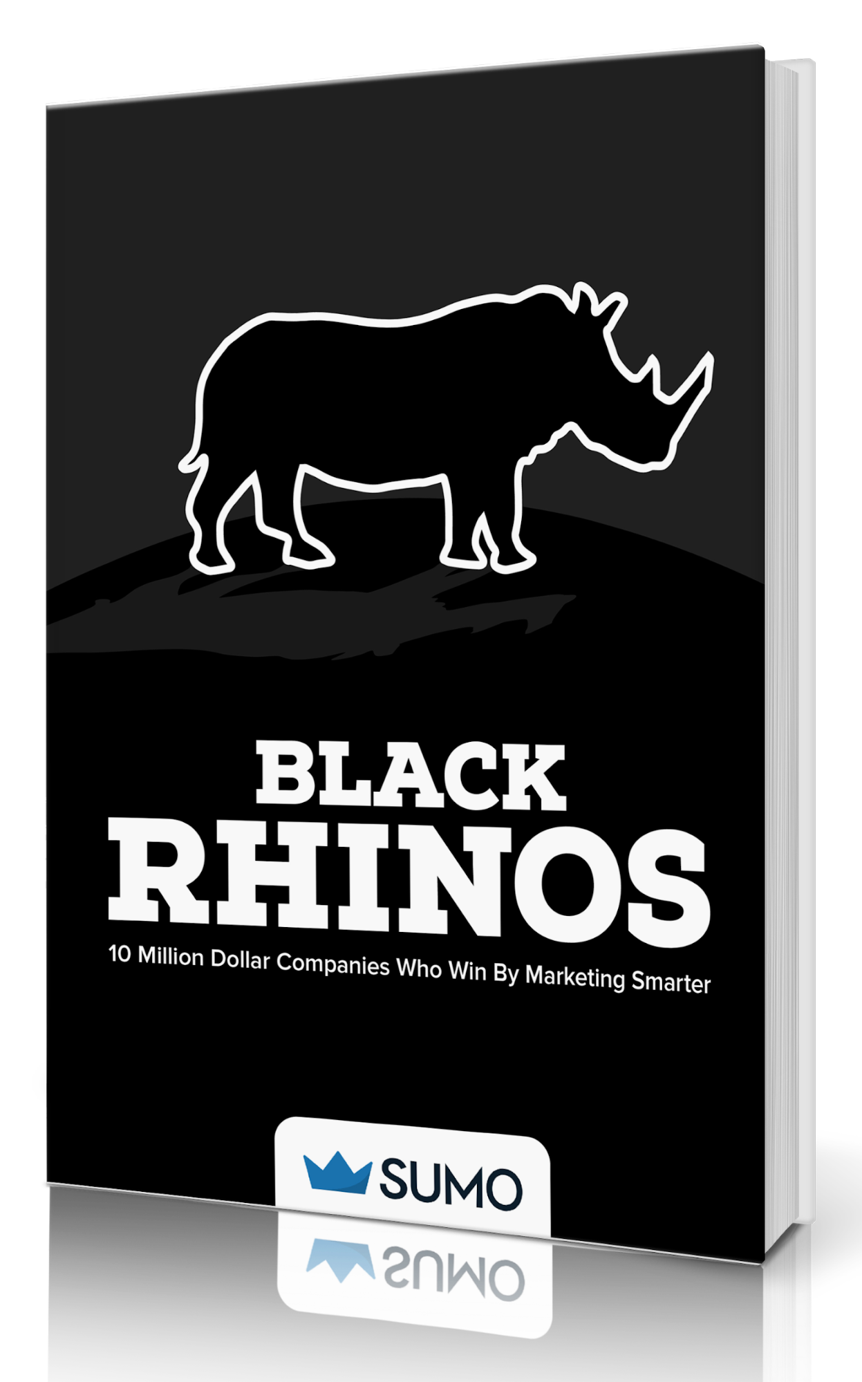 Book cover for the black rhino book