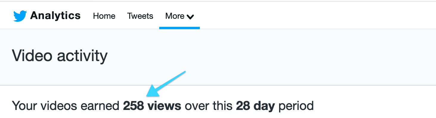 video analytics earned 258 views over 28 days