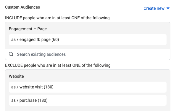 AppSumo Custom Audiences Campaign Targeting