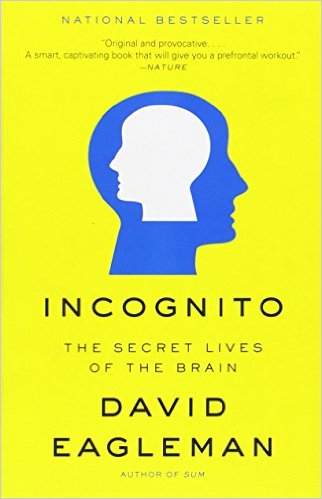 Cover art for Incognito