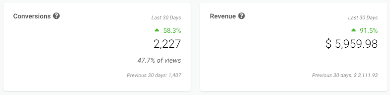 Screenshot showing conversions and revenue stats