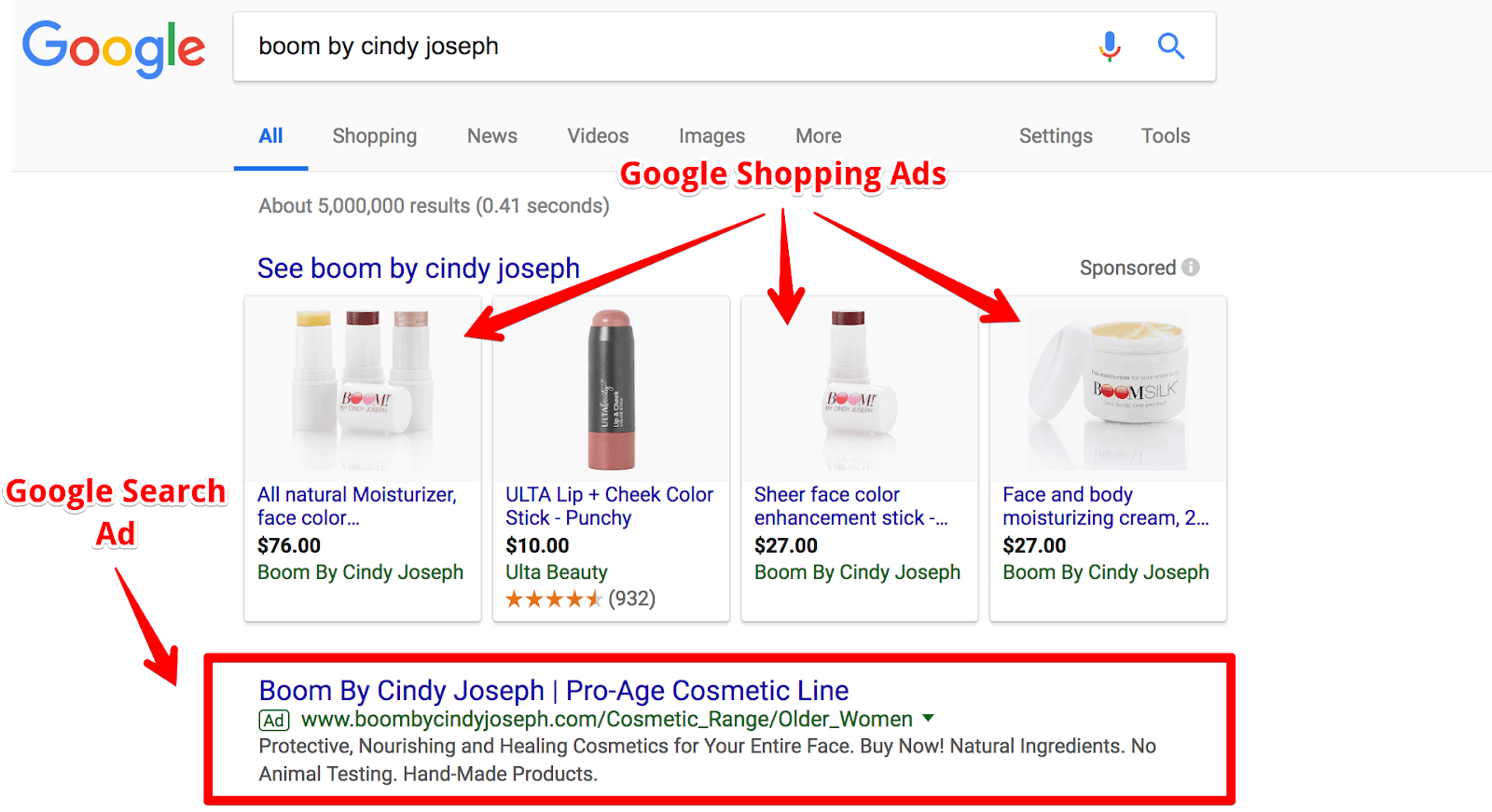 Screenshot showing a google search results page