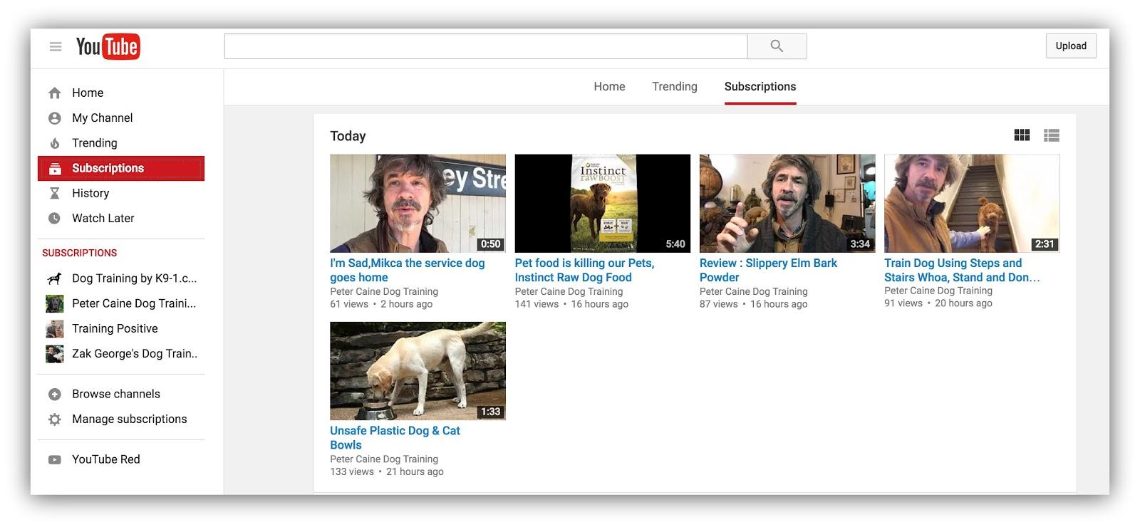 youtube peter caine dog training