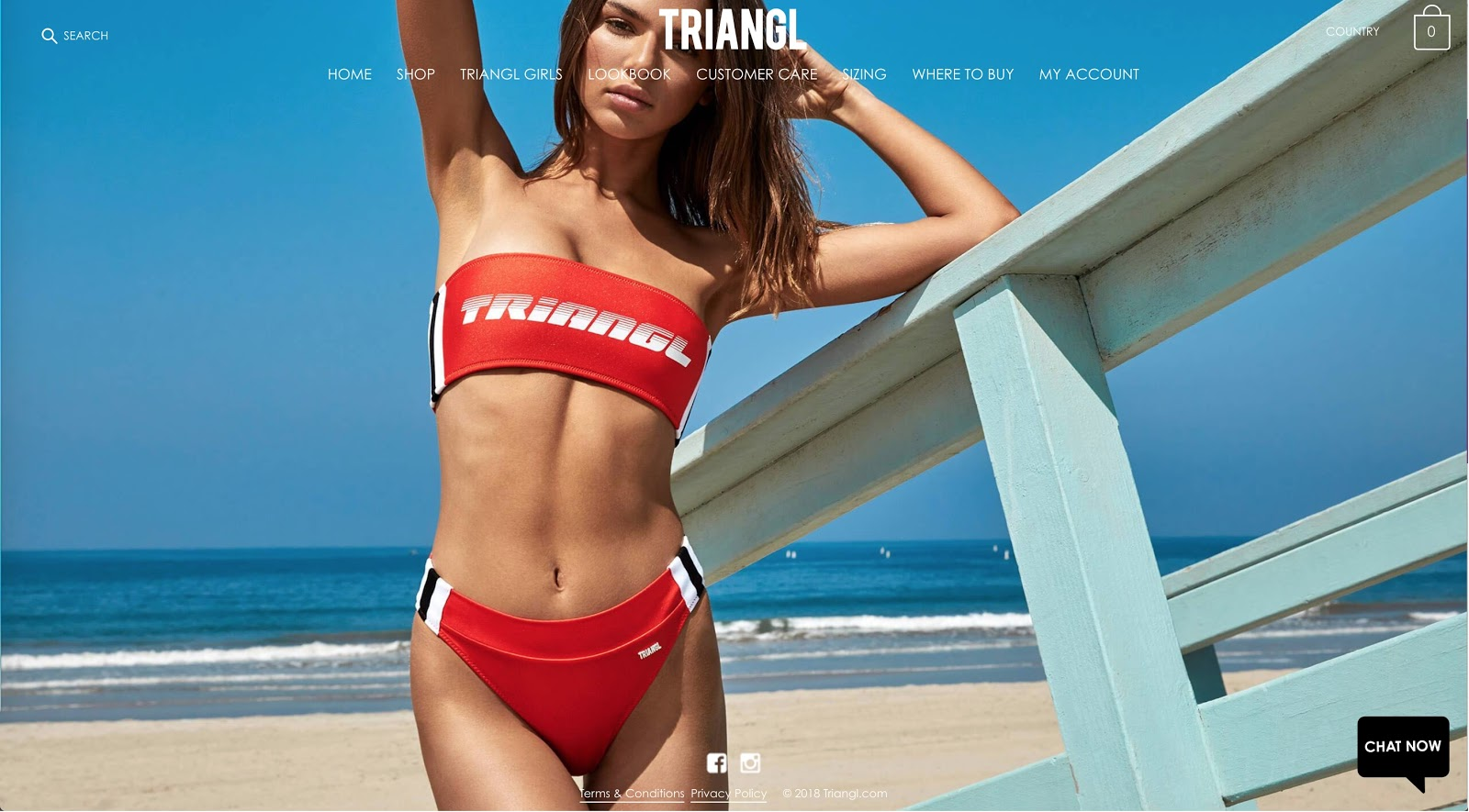 Screenshot showing a landing page featuring a bikini model